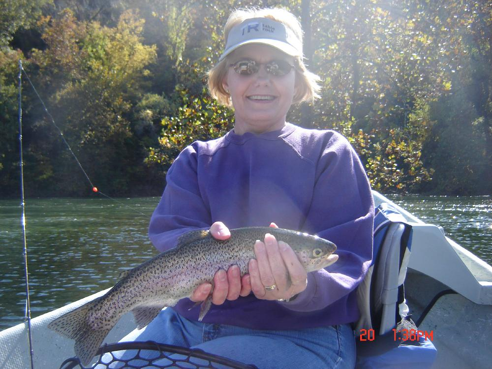 You should have been here yesterday branson trout for Branson trout fishing