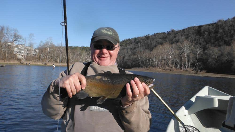 Martin and 19 inch bow 021113